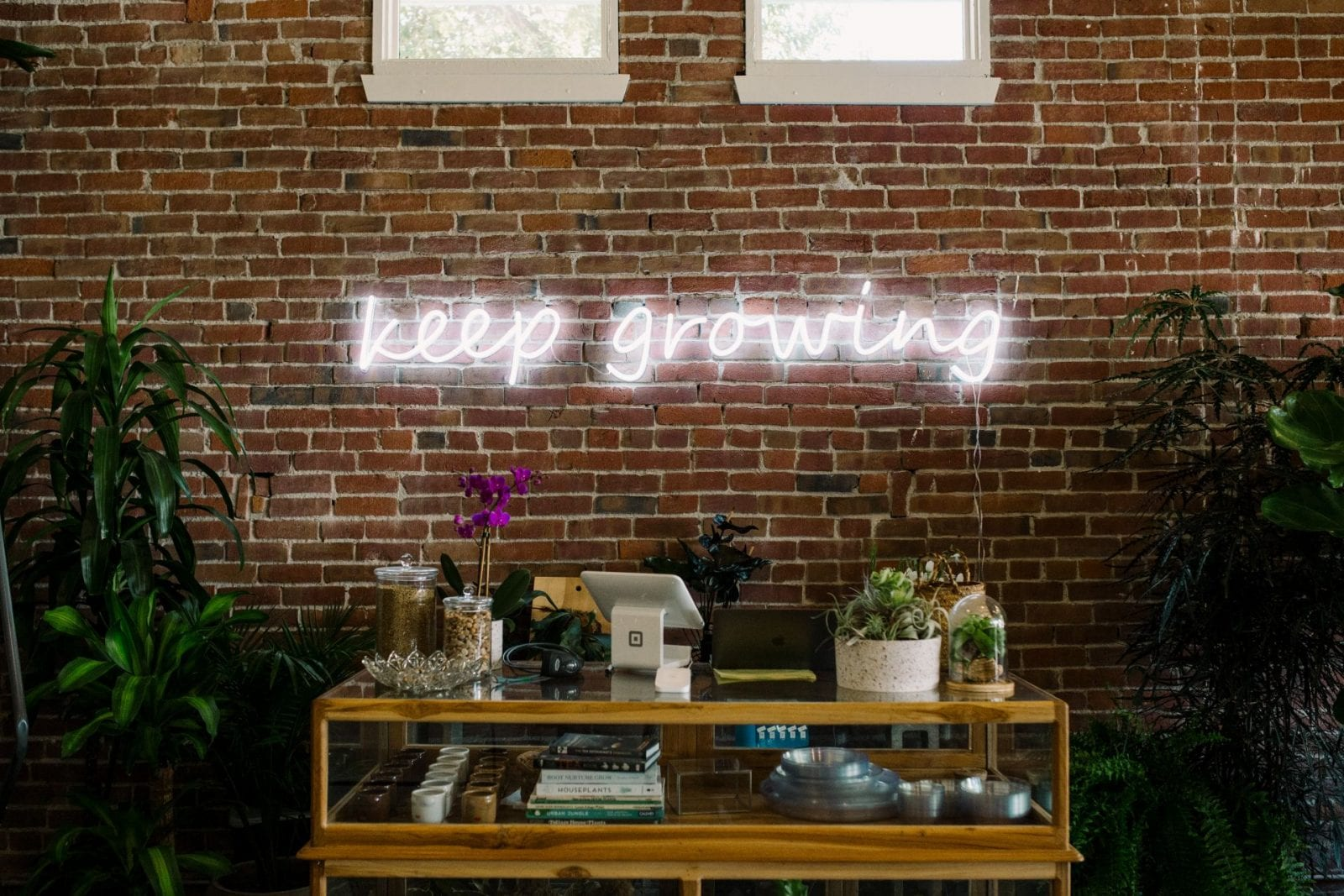 Around Town: Propagate, Sacramento's Newest Plant Shop | SarahMichiko.com